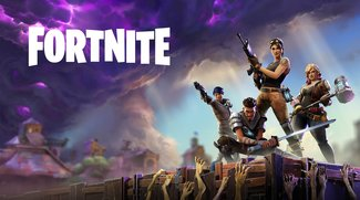 Fortnite: Community hilft einarmigem Spieler