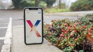 iPhone X Marke Eigenbau: Ist das möglich?