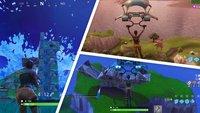 Fortnite - Battle Royale: Lama, Fuchs und Krabbe finden - hier sind die Tiere