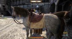 Kingdom Come Deliverance: Pferd finden - Plötze, Epona und andere Pferde-Fundorte
