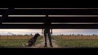 Landwirtschafts-Simulator 19: Erster Trailer zeigt große Veränderungen