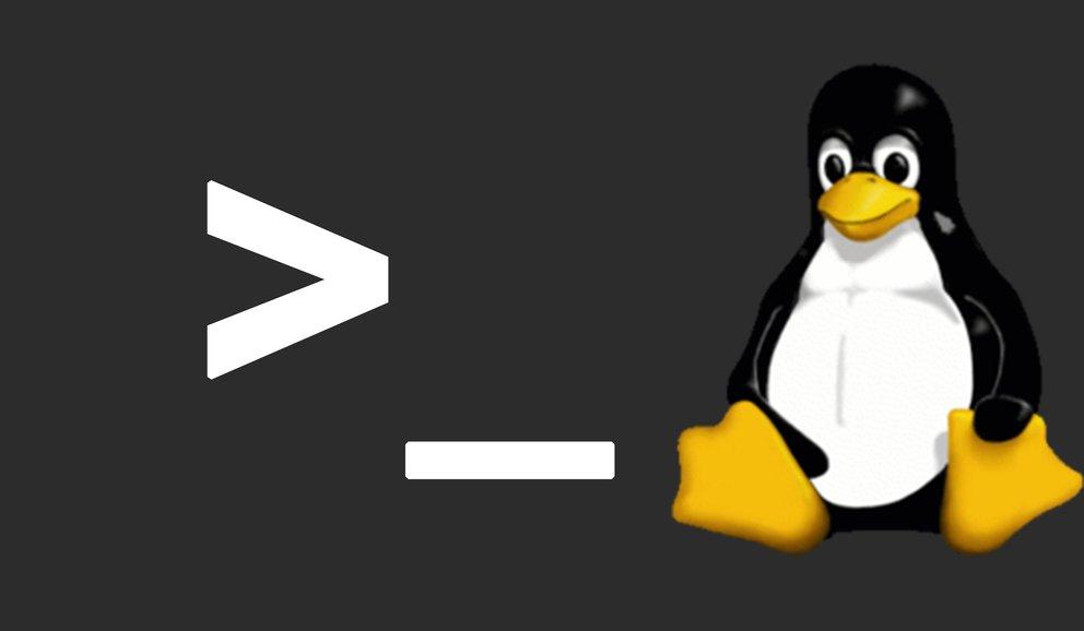 Die 15 wichtigsten Linux-Befehle im Terminal (für Einsteiger)