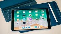 iPad mini 2019: Beliebtes Tablet-Zubehör von Apple soll unterstützt werden