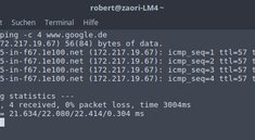 Linux: Ping-Befehl