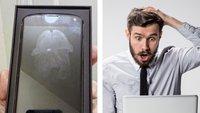 17 Fotos von Leuten, die ihren Online-Kauf garantiert bereuen
