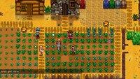Stardew Valley: Im nächsten Monat soll endlich der Multiplayer Modus erscheinen