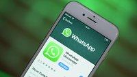 Nutzt ihr den WhatsApp-Status?