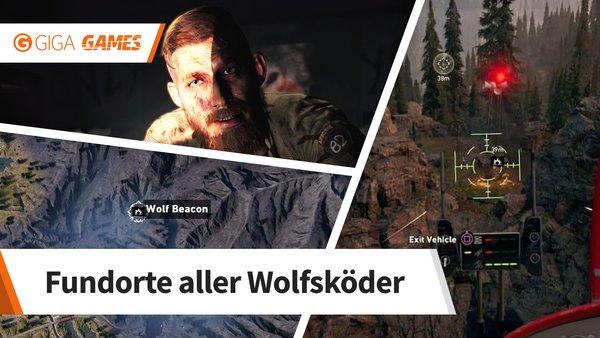 Far Cry 5 Wolfsköder Karte.Far Cry 5 Alle Wolfsköder Fundorte Für Ruf Der Wildnis