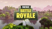 Fortnite BR: Spieler melden - so geht's (Kurztipp)