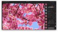Pixelmator Pro: So arbeitet man mit der Mac-Bildbearbeitung