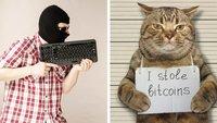 Die absurdesten Stockfotos von Hackern