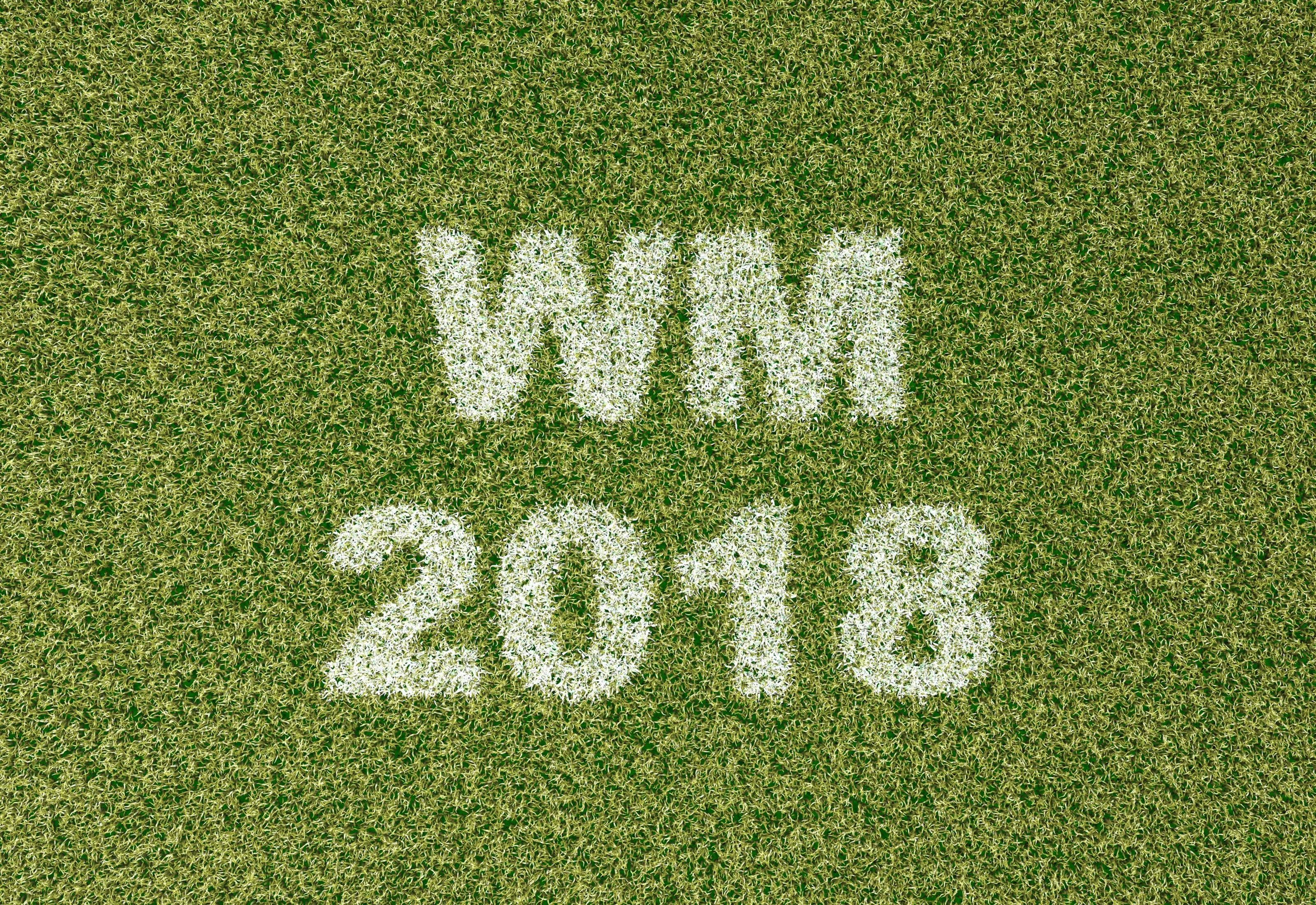 REWE WM 2018 Sammelkarten 12 Niklas Süle GLITZER