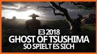 Ghost of Tsushima: So wird das Samurai-Abenteuer für die PS4
