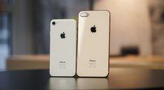 iPhone 7 & 8 wieder bei Apple zu kaufen: Handy-Verkaufsverbot erfolgreich umgangen