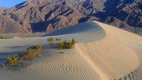 macOS Mojave: Release-Termin - wann kommt es raus?