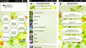 Bienen-App