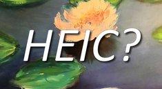 HEIF/HEIC: Datei öffnen und konvertieren – iPhone, Android, Windows
