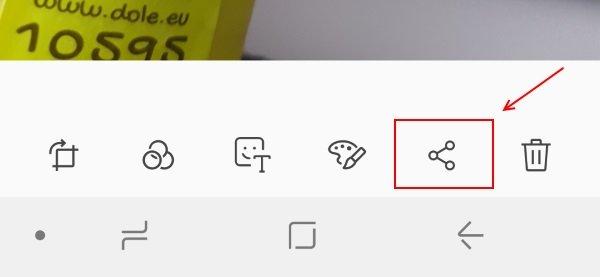 Whatsapp Bilder Verschicken Anleitung Und Tipps Für Bessere Qualität