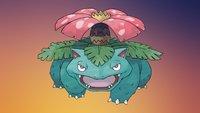Glurak ist ein Drache, Turtok eine Schildkröte – aber was ist Bisaflor?