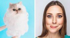 34 Instagram-Bilder von Katzen, bei denen dir das Wasser im Mund zusammenläuft