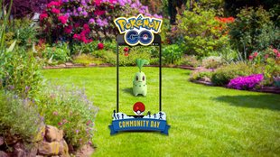 Pokémon Go: Alle Details zum Endivie Community Day