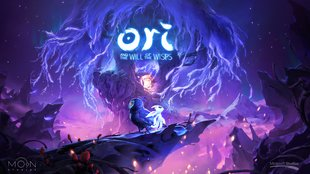 Ori and the Will of the Wisps: Messe dich im neuen Modus mit Freunden