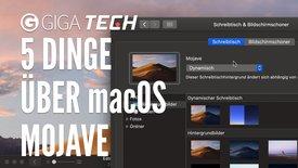5 Dinge über macOS Mojave