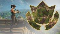 Fortnite: Suche zwischen Tankstelle, Fußballfeld und Stunt Mountain (Woche 4, Season 5)