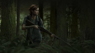 The Last of Us 2: Alles über Setting, Story und Charaktere