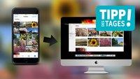 iPhone-Fotos ohne Konvertierung schnell auf den Mac übertragen, so gehts