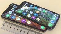 Umfrage: Das richtige Smartphone-Maß – kommt es auf die Größe an?