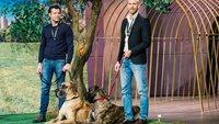 """Goleygo aus """"Die Höhle der Löwen"""" kaufen: Die Revolution der Hundeleine"""