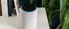 Das beste Alexa-Zubehör: 5 Dinge, die deinen Alltag mit dem Echo-Lautsprecher verbessern