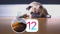"""Versäumte iPhone- und Mac-Aktualisierungen: Gibt's den """"Update-Muffel"""" noch?"""