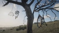 Red Dead Redemption 2: Traumfänger - alle Fundorte auf der Karte
