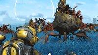 Flitzende Steine fliehen vor No Man's Sky-Spielern, und die sorgen sich um die Entwickler