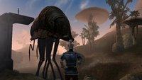 25 Jahre The Elder Scrolls: Hol dir Morrowind bis Sonntag kostenlos!