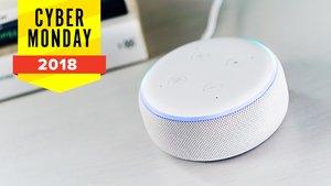 Amazon Echo in der Cyber-Monday-Woche: Auch Neuheiten bis zu 50 Prozent reduziert