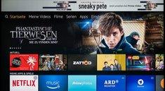 Netflix auf Amazon Fire TV Stick nutzen – so geht's