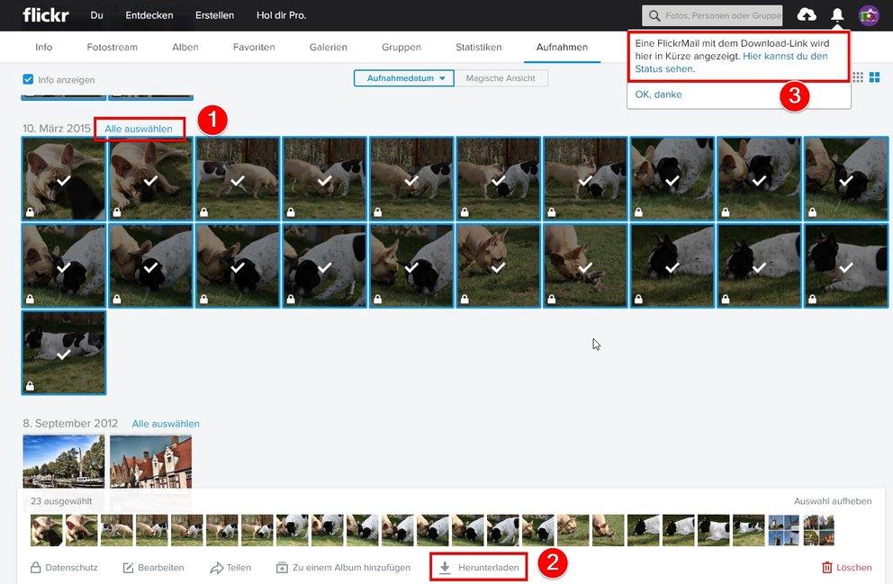 Flickr Fotos Downloaden