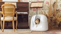 Sauber und ohne Gerüche: Dieses elektrische Katzenklo ist die Zukunft