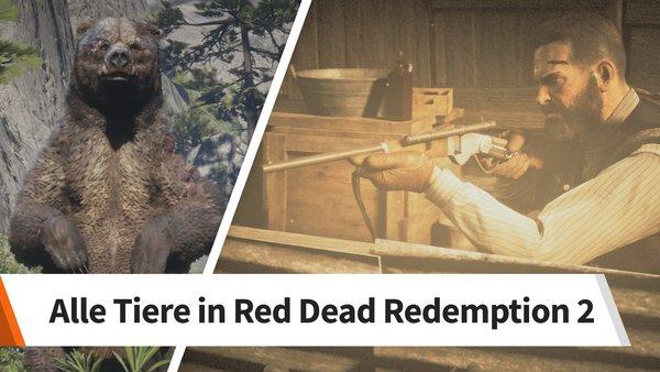 Red Dead Redemption 2 Legendare Tiere Karte.Red Dead Redemption 2 Alle Tiere Fundorte Legendare