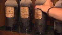 Jimi-Blue-Ochsenknecht-Wein: Genuss für die Jugend muss es sein!