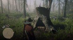 Red Dead Online: Blackbone Forest Schatz - alle 4 möglichen Fundorte