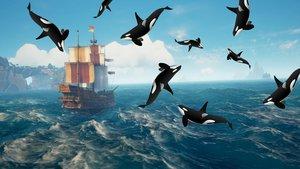 Oh – Im Piraten-MMO Atlas fielen Wale vom Himmel