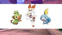 Pokémon Schwert und Schild: Die neuen Starter werden vom Netz gefeiert