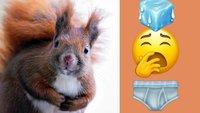 75 Emojis, die du garantiert noch nicht auf dem Handy hast