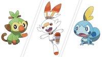 Umfrage: Welches Starter-Pokémon werdet ihr in Schwert & Schild wählen?
