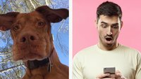 25 verrückte Fotos, die Menschen auf ihrem Handy gefunden haben