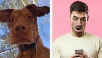 25 verrückte Fotos, die zeigen, warum ihr nie euer Handy verlieren solltet